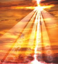 Ser sal y luz con nuestro compromiso de fraternidad