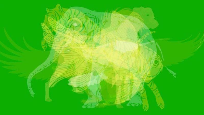 ¿Qué animal ves primero en esta imagen?